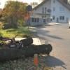 Drzewo uszkodziło samochód