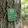 Narol. Światowy Dzień Drzewa