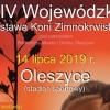 Oleszyce. XIV Wojewódzka Wystawa Koni Zimnokrwistych
