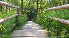 Działania ochronne na obszarze Natura 2000