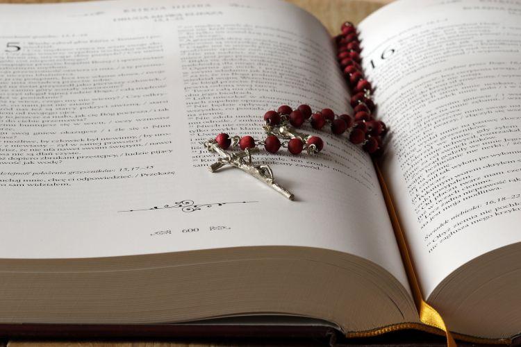 """""""Biblia – chleb słowa"""""""