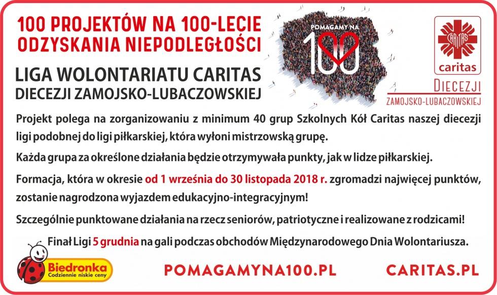 Liga Wolontariatu Caritas Diecezji Zamojsko-Lubaczowskiej