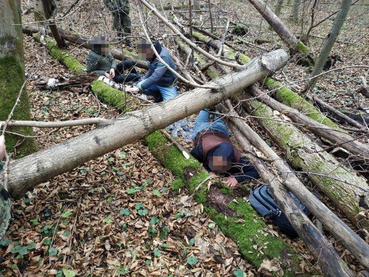 Nielegalni migranci w lesie
