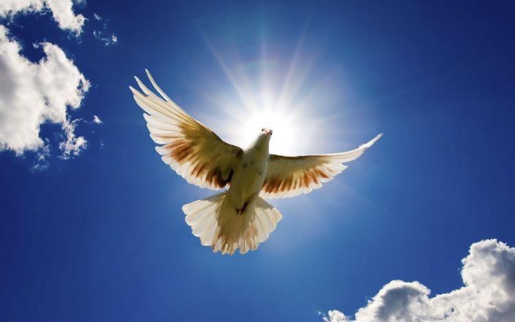 Znalezione obrazy dla zapytania: duch święty