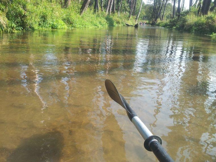 Sprzątanie rzeki