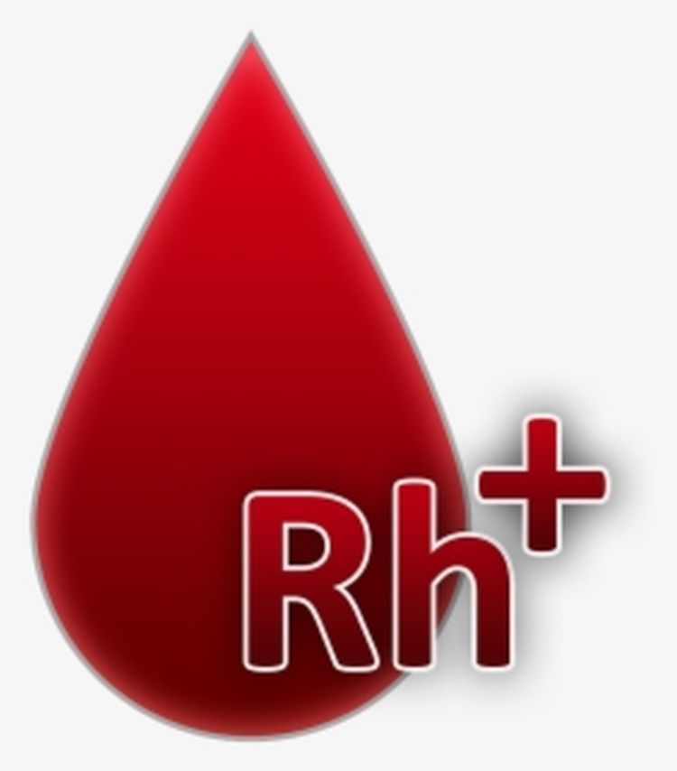 Sukcesy gminnych akcji krwiodawstwa