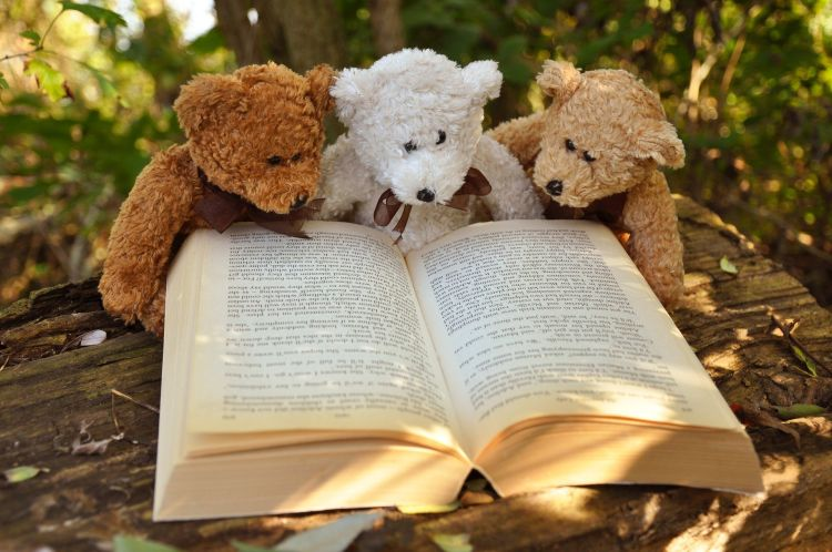 Światowy Dzień Pluszowego Misia z Biblioteką