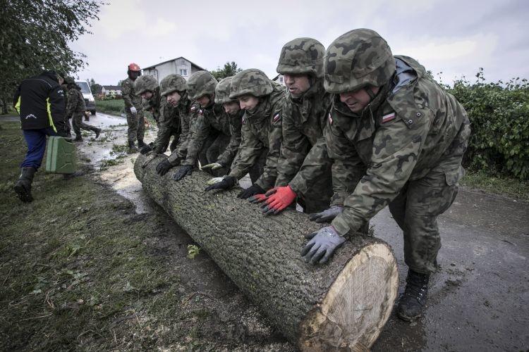Terytorialsi pomagają po nawałnicy w gminach Wojciechów i Konopnica