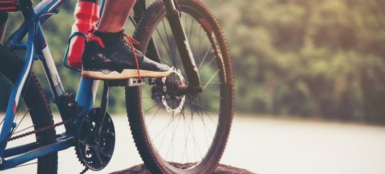 Za darmo rowerem lub MZK