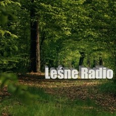 Leśne Radio